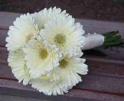 ramo de novia con gerberas blancas
