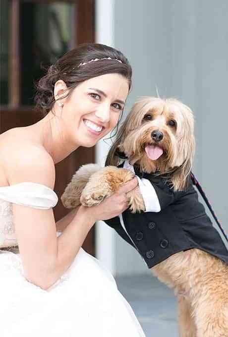 Participación de llas mascotas en una boda