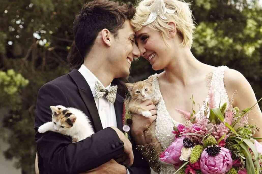 boda con mascotas