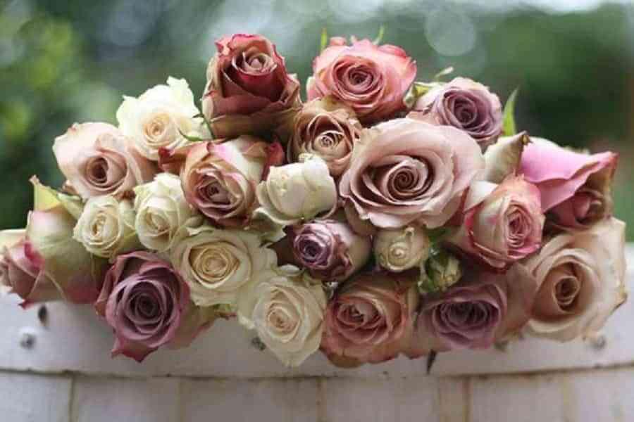 Nombre y significado de las flores que decorarán tu boda